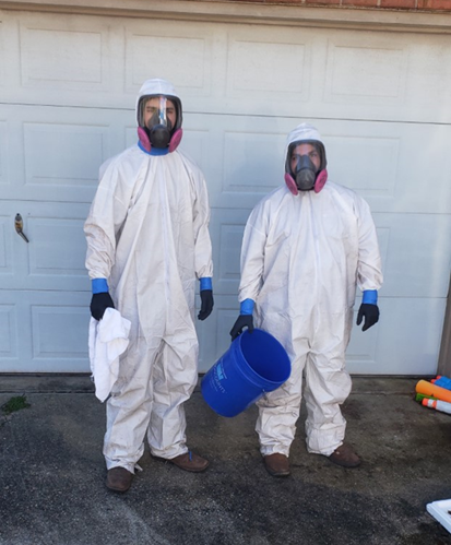 Mold Inspection and Mold Remediation